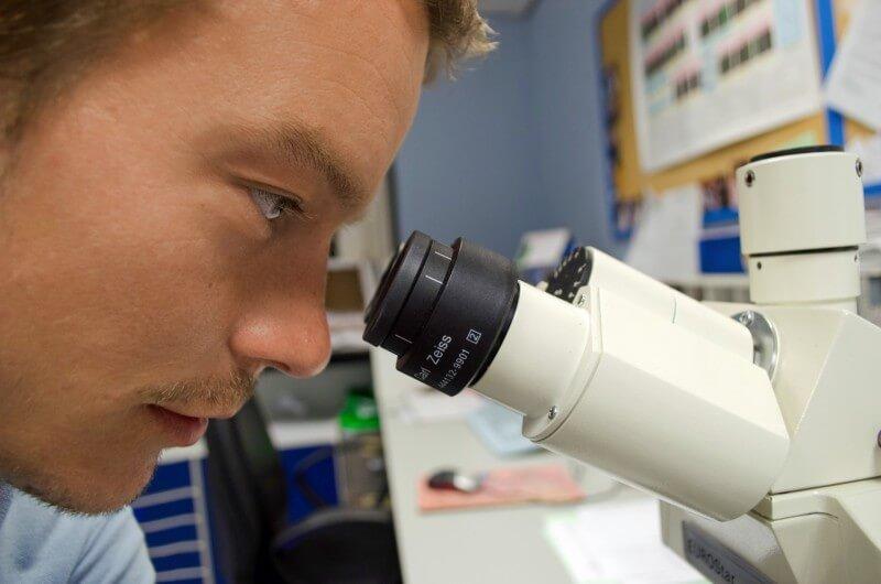 Studia biotechnologiczne – czy warto je wybrać