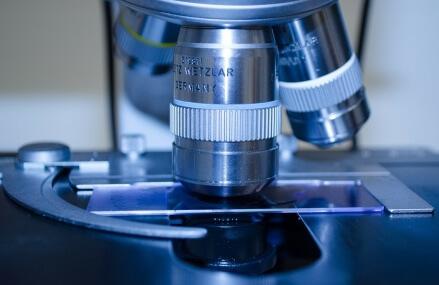 Studia na kierunku biotechnologia