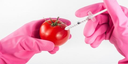 Zalety studiowania biotechnologii